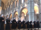 You can watch the Mass of perpetual profession here!